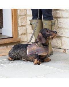 <Mutts & Hounds> 防水犬用ハーネス タータン柄