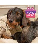 <Mutts & Hounds> 犬用ツイード蝶ネクタイ グリーン